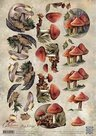 CD10757 3D Knipvel - Amy Design - Autumn Moments - Paddenstoelen