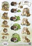 CD10455 - 3D knipvel Amy Design Rodents