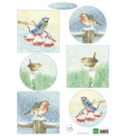 IT605 Knipvel Tiny's birds in winter