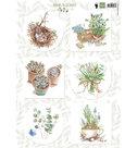 EWK1254 -Knipvel Els Wezenbeek Herbs & leaves 1