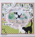 IT608 Knipvel Tiny's kittens vb