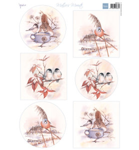 MB0181 Knipvel Mattie's Mooiste Winter birds