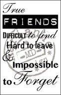 CS0900 Clear stempel true friends